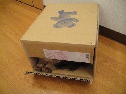 2011032500.jpg