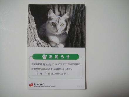 2011082700.jpg